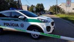 Na Slovensku sa vlani zvýšil počet prípadov týrania blízkej osoby