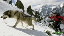 Horským záchranárom sťažujú prácu časté výjazdy k začínajúcim skialpinistom