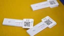 Na Slovensko mieri 35 miliónov antigénových testov na samotestovanie