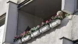Inšpektorát práce preverí možné týranie dôchodcov v ružinovskom domove