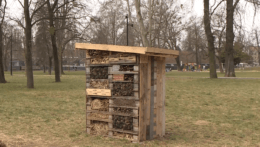 V Košiciach pribudli dva hmyzie hotely. Postavili ich takmer zadarmo