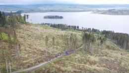 Milión stromov pre Slovensko. Dobrovoľníci dávajú holinám nový život