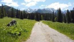 """""""Deň D"""" pre milovníkov vysokohorskej turistiky: Otvorili všetky značené turistické chodníky"""