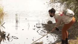 V Bratislave sa bojuje proti komárom na plné obrátky