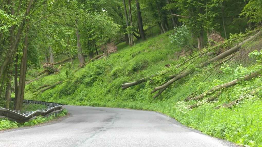 Vyvrátené stromy v krupinskom okrese znepríjemňujú vodičom život