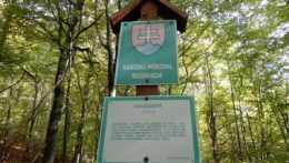 Informačný pútač o Národnej prírodnej rezervácii Havešová.