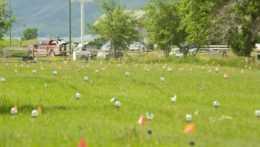 Neoznačené hroby detí v Kanade