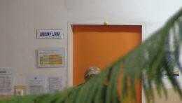 Ministerstvo zdravotníctva chce prilákať lekárov do okresov, kde akútne chýbajú