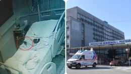 Potkan v Košickej nemocnici