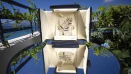 Ocenenia Zlatá palma pre najlepší film Medzinárodného filmového festivalu v Cannes