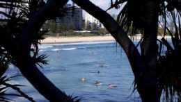 Útok žraloka v Austrálii