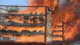 Nosorožie rohy v plameňoch.