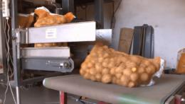 Mech zemiakov
