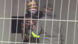 Zatknutie Zuzany Plačkovej