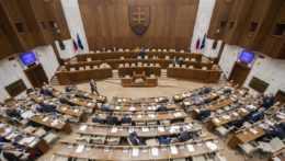 parlamentná schôdza